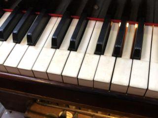 Duo Flûte Traversière, Chant et Orgue 5