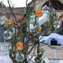 Jardin d'Arums 5