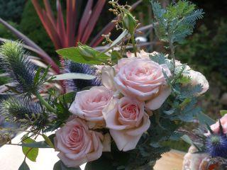 Chez Fleur 4