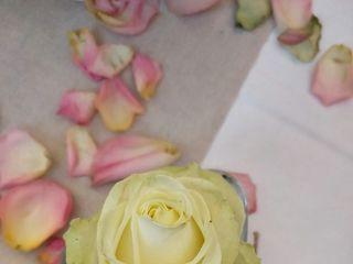 A Fleur de Pot - Fleuriste, Décorateur 4