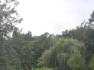 Domaine de Millox 2