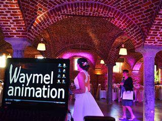 Waymel Animation 2