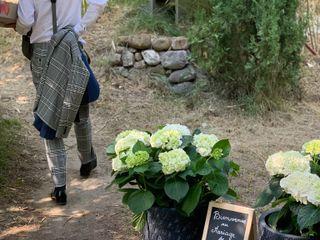 Maud Créations Florales 3