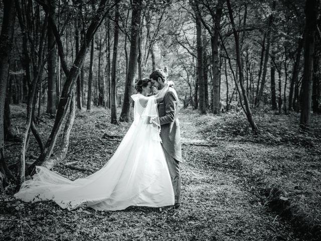 Le mariage de Alexis et Marie à Lyons-la-Forêt, Eure 76