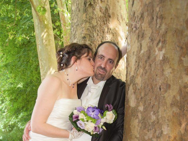 Le mariage de Fabrice et Aurélie à Asnières-sur-Oise, Val-d'Oise 29