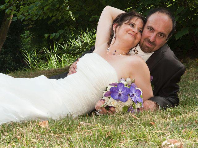 Le mariage de Fabrice et Aurélie à Asnières-sur-Oise, Val-d'Oise 31