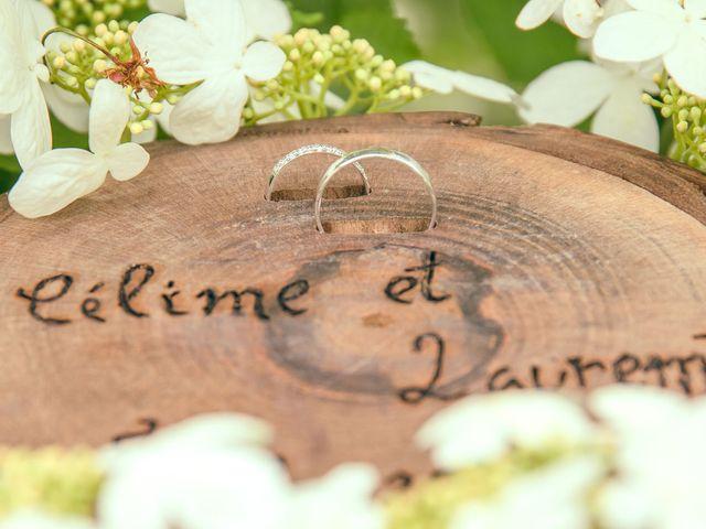 Le mariage de Laurent et Céline à Luneray, Seine-Maritime 24