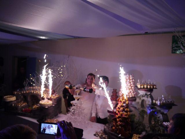 Le mariage de Baptiste et Fanny à Anthon, Isère 15