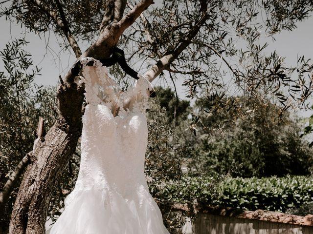 Le mariage de Vincent et Aurélie à Saint-Martin-de-Crau, Bouches-du-Rhône 4