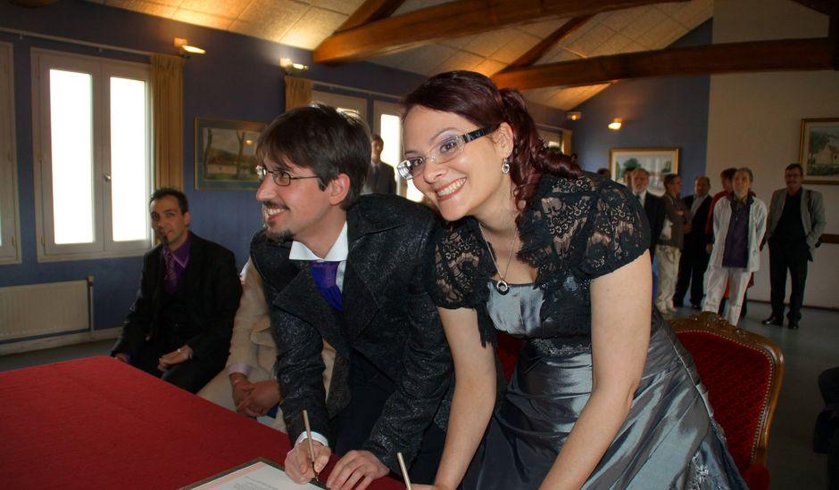 Le mariage de Céline et Nicolas à Courville-sur-Eure, Eure-et-Loir