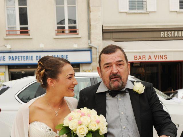 Le mariage de Grégory et Emilie à Maisons-Alfort, Val-de-Marne 7