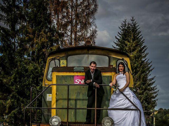 Le mariage de Alexandra et Edric à Clermont-Ferrand, Puy-de-Dôme 59
