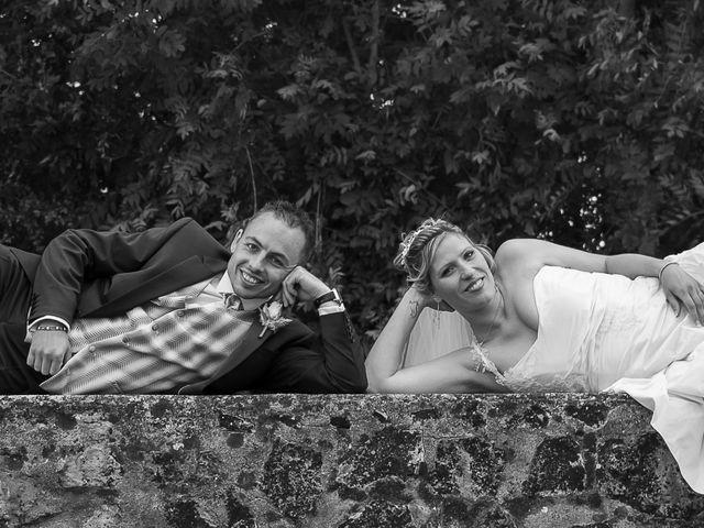Le mariage de Grégory et France à Neuillé-Pont-Pierre, Indre-et-Loire 14