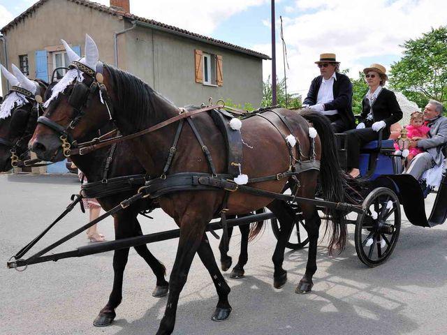 Le mariage de Sandrine et David à Montdragon, Tarn 8