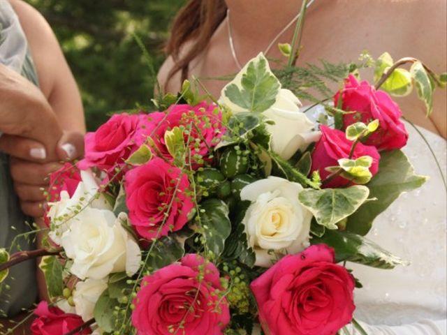 Le mariage de Laurie et Léo à Oraison, Alpes-de-Haute-Provence 7