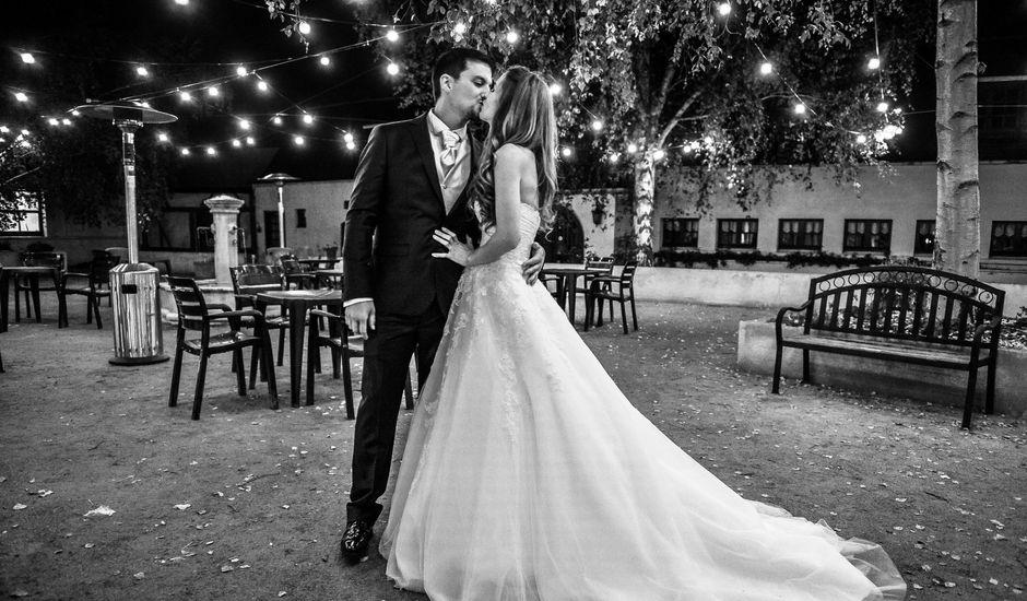 Le mariage de David et Myriam à Ons-en-Bray, Oise
