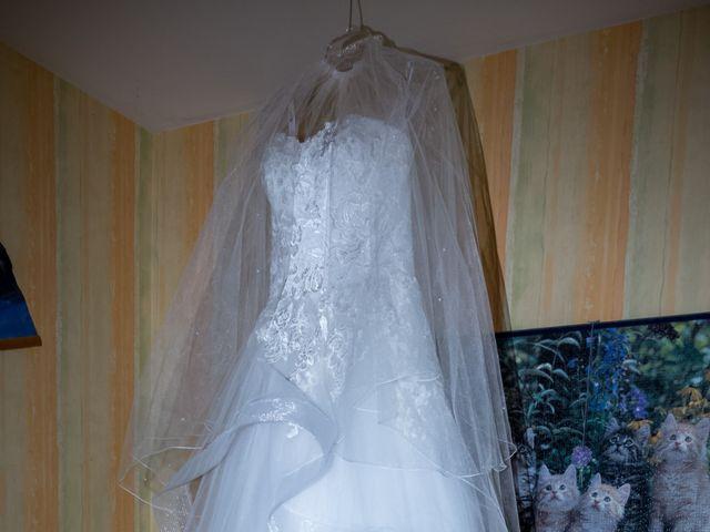 Le mariage de Francis et Emilie à Combronde, Puy-de-Dôme 3