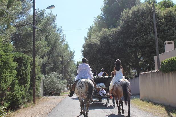 Le mariage de Claudine et Michel à Pélissanne, Bouches-du-Rhône 1