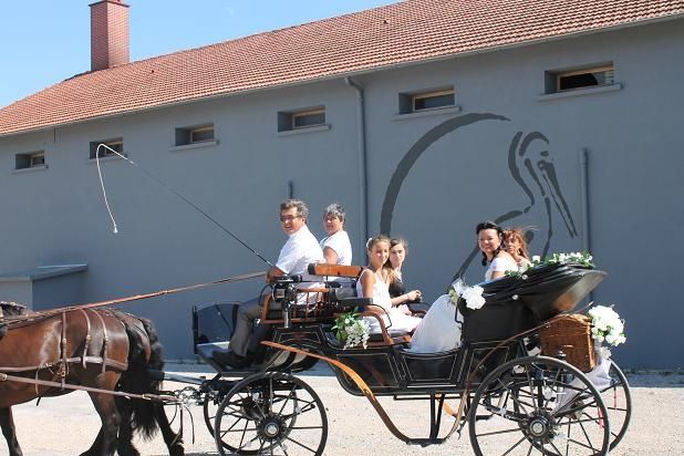 Le mariage de Claudine et Michel à Pélissanne, Bouches-du-Rhône