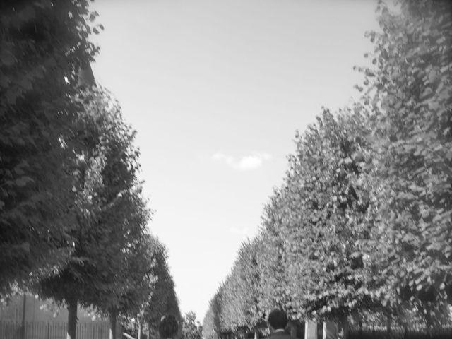 Le mariage de Virginie et Rémi à Bonson, Loire 15
