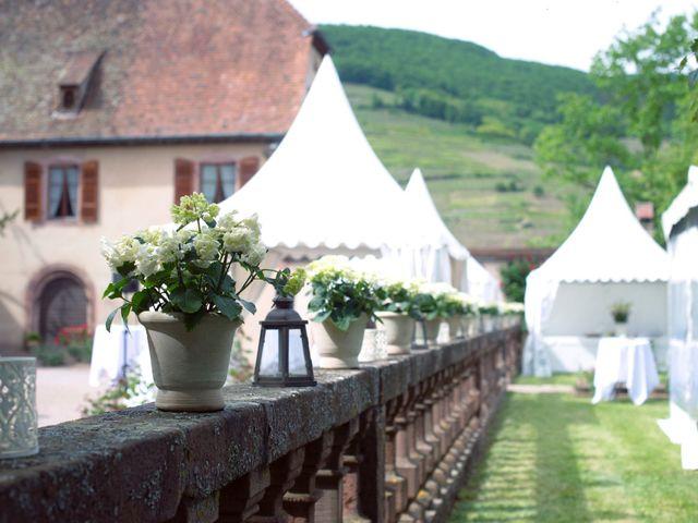 Le mariage de Emmanuel et Dominique à Colmar, Haut Rhin 6
