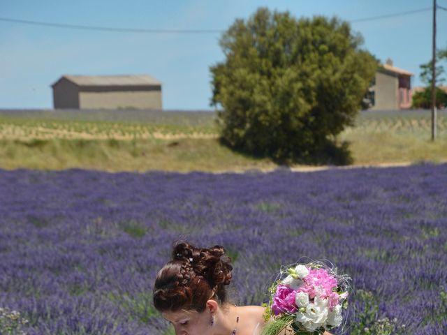 Le mariage de Vincent et Marine à Valensole, Alpes-de-Haute-Provence 6