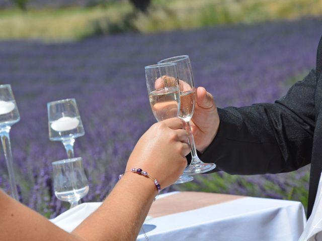 Le mariage de Vincent et Marine à Valensole, Alpes-de-Haute-Provence 20