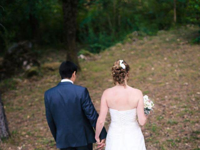 Le mariage de Pierre et Nathalie à Ganges, Hérault 29