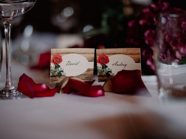 Le mariage de David et Audrey à Villette-d'Anthon, Isère 95