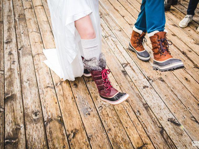 Le mariage de Cédric et Camille à Saint-Sixt, Haute-Savoie 14