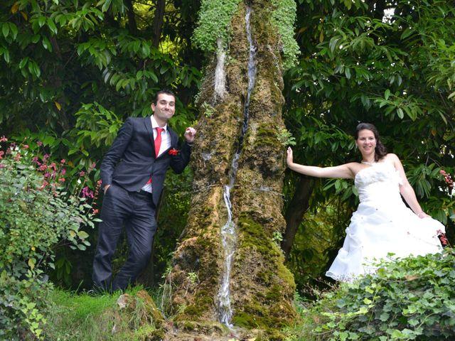 Le mariage de Aurélien et Catheline à La Falaise, Yvelines 2