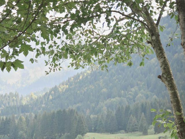 Le mariage de Arnaud et Marine à Habère-Poche, Haute-Savoie 15