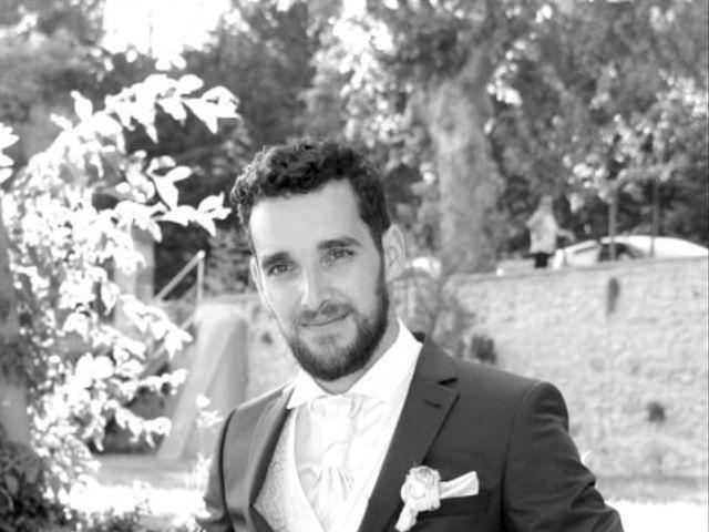 Le mariage de Sébastien et Elodie à Nîmes, Gard 3