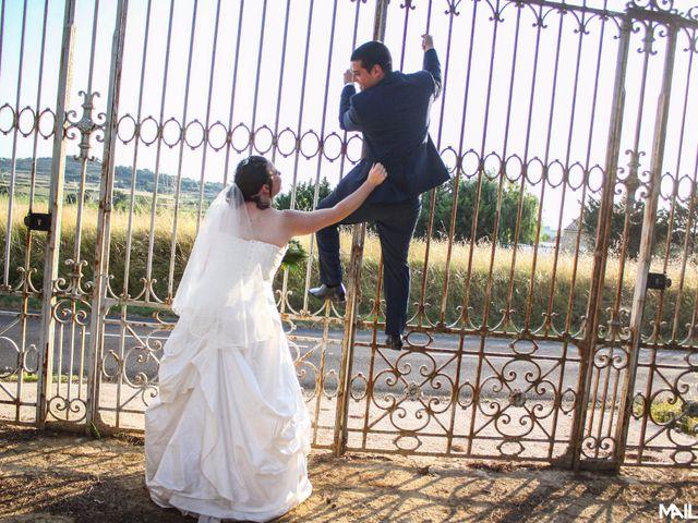 Le mariage de Alexandre et Marina à Nébian, Hérault 14