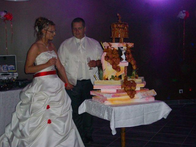Le mariage de Aurore et Patrice à Cardet, Gard 9