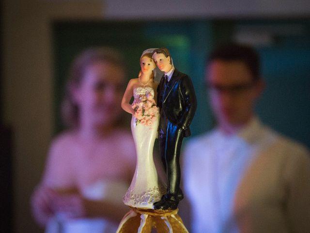 Le mariage de Aurélien et Laurence à Aigues-Vives, Gard 38