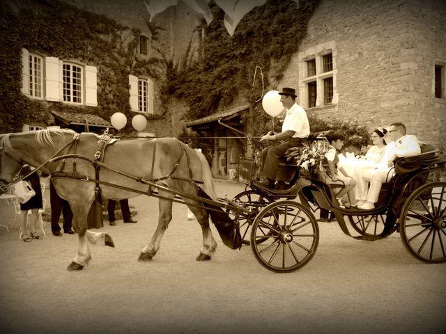 Le mariage de Luc et Emilie à Mâcon, Saône et Loire 29