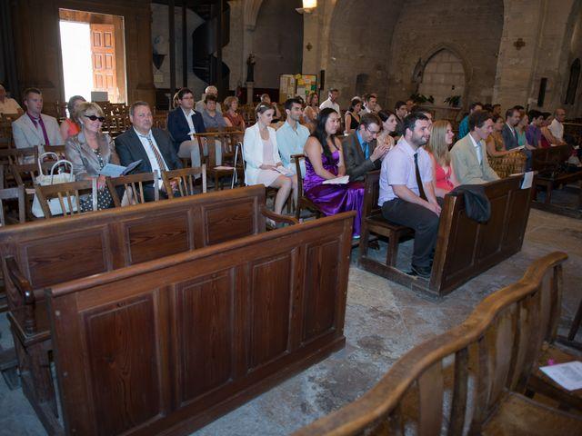 Le mariage de Agnès et Bertrand  à Entraigues-sur-la-Sorgue, Vaucluse 14