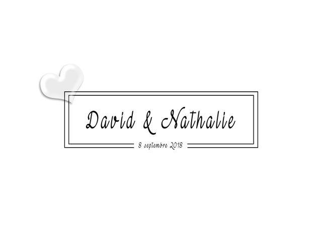 Le mariage de David et Nathalie à Rieux-de-Pelleport, Ariège 10