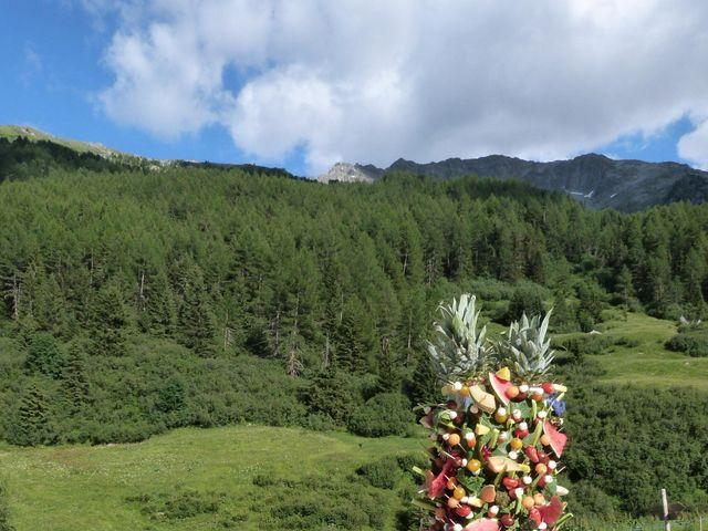 Le mariage de Jean et Léa à Peisey-Nancroix, Savoie 9
