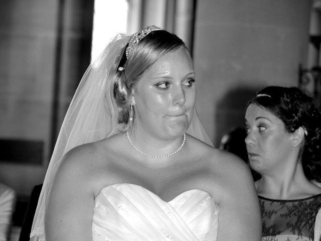 Le mariage de Alexis et Elise à Luzarches, Val-d'Oise 38