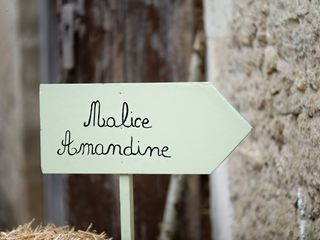 Le mariage de Amandine et Marine-Alice 1