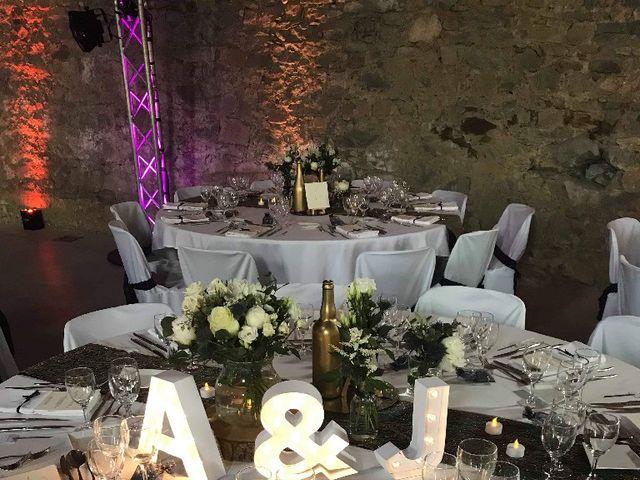 Le mariage de Julien et Aline  à Communay, Rhône 3