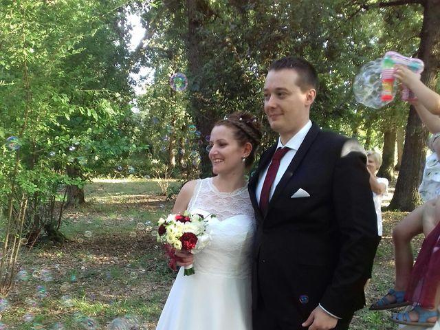 Le mariage de Julien et Laure à Giroussens, Tarn 3