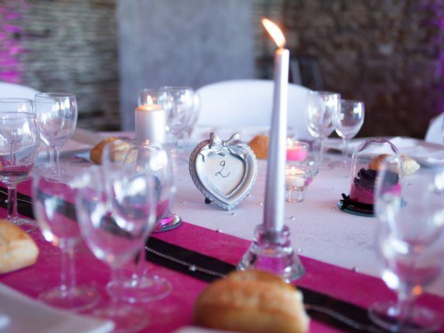 Le mariage de Franck et Cécile à La Couyère, Ille et Vilaine 2