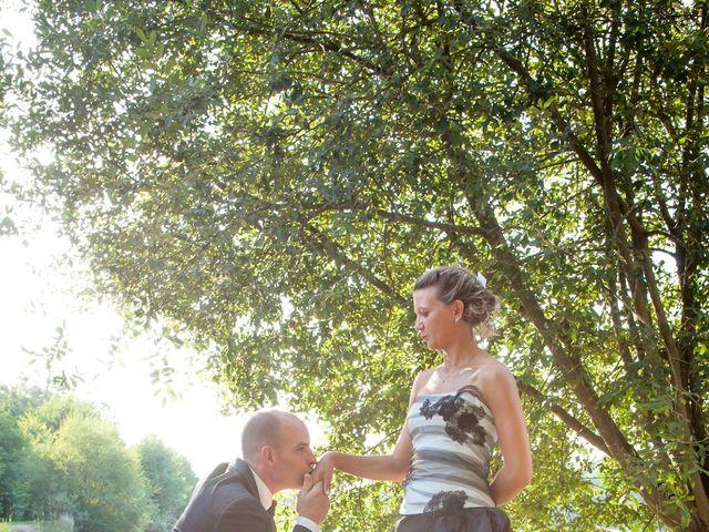 Le mariage de Franck et Cécile à La Couyère, Ille et Vilaine 6