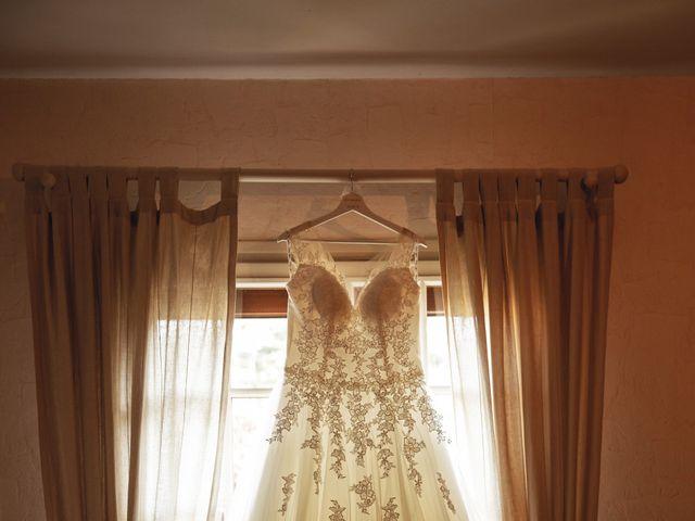 Le mariage de Alexandre et Delphine à Rosny-sur-Seine, Yvelines 3