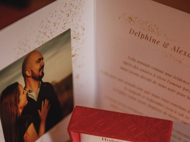 Le mariage de Alexandre et Delphine à Rosny-sur-Seine, Yvelines 4