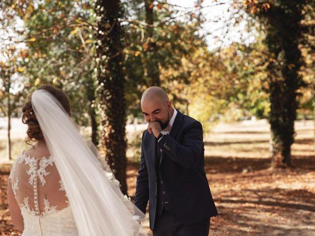 Le mariage de Alexandre et Delphine à Rosny-sur-Seine, Yvelines 15