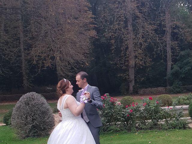 Le mariage de Miljan et Miljana à Nandy, Seine-et-Marne 44